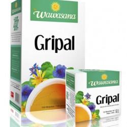 WAWASANA GRIPAL - PERUVIAN TEA INFUSIONS , BOX OF 100 UNITS